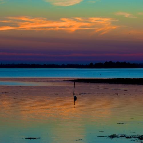 Golfe du Morbihan, 2012. © Oliver Denfer