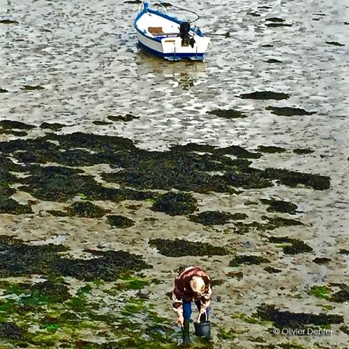 Galerie art : photo Pêcheur à pied