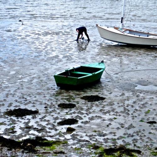 Achat photo Pêche à pied