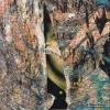 Photographie dart : Regard caché - Galerie photos Grafphotos